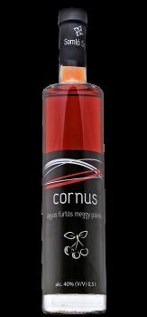 cornus_agyas_meggy.png