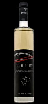 cornus_agyas_szolo.png