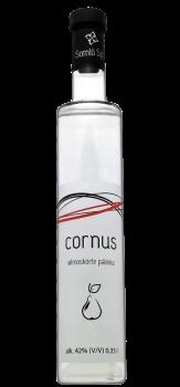 cornus_vilmos.png
