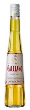 galliano-0-5.jpg