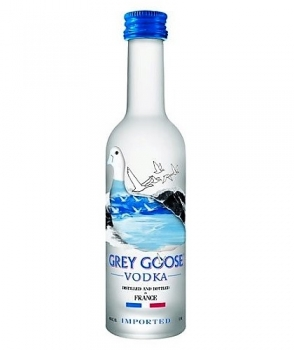 grey-goose-mini.jpeg